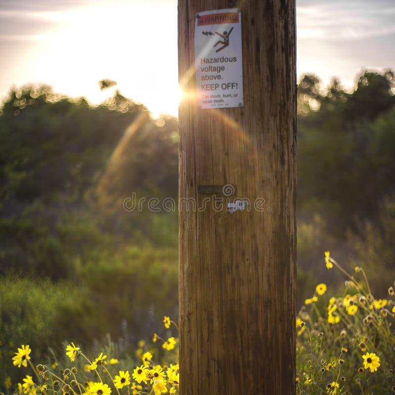 Znak ostrzegawczy na drewnianym elektryczność słupa zmierzchu fotografia royalty free