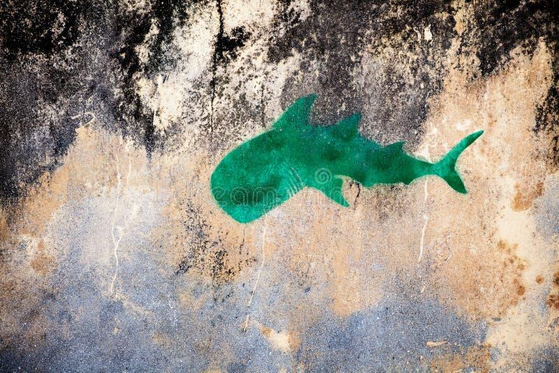 Znak rekin na starej ścianie w tropikalnej wiosce zdjęcie stock