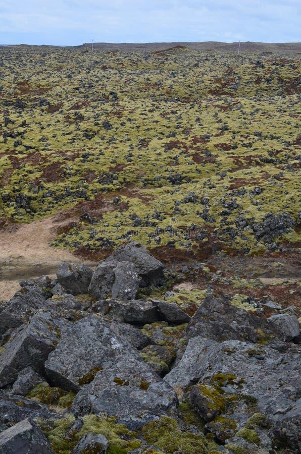 Zniewalający widok lawowy pole z mech i powulkanicznymi skałami obraz royalty free