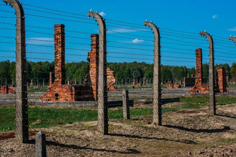 Zniszczony koszaruje wśrodku Auschwitz, Birkenau koncentracyjnego obozu - fotografia royalty free
