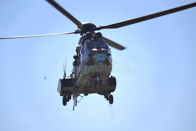 Zoals-532 AL Cougar royalty-vrije stock foto