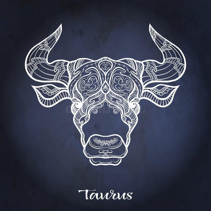 Zodiac sign. Astrological horoscope collection. Vector illustration. Taurus, bull, ox Zodiac sign. Astrological horoscope collection. White on dark blue, black vector illustration