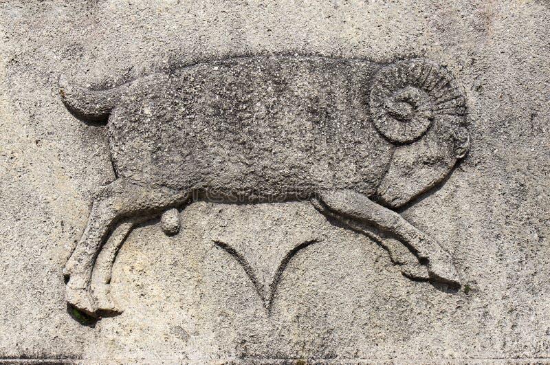 Zodiaco - aries o Ram foto de archivo
