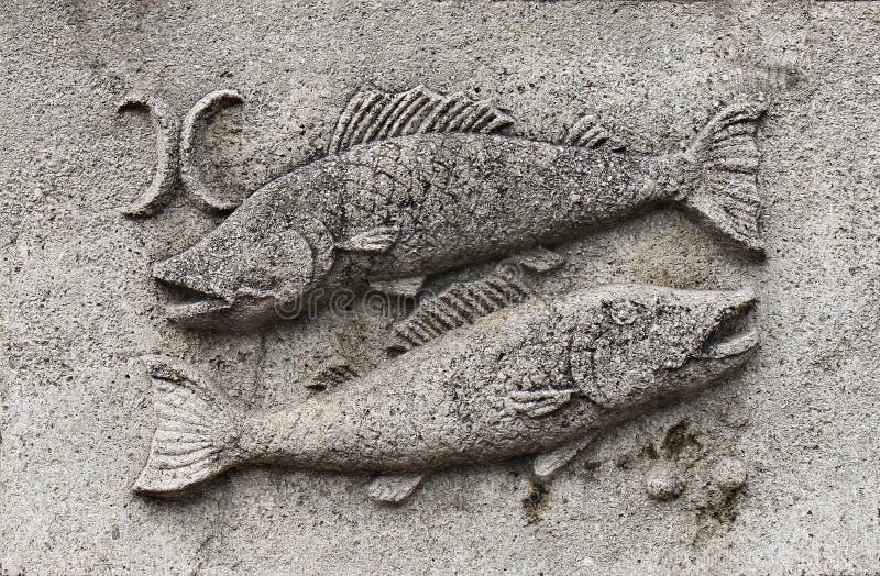 Zodiak - Pisces lub ryba fotografia royalty free