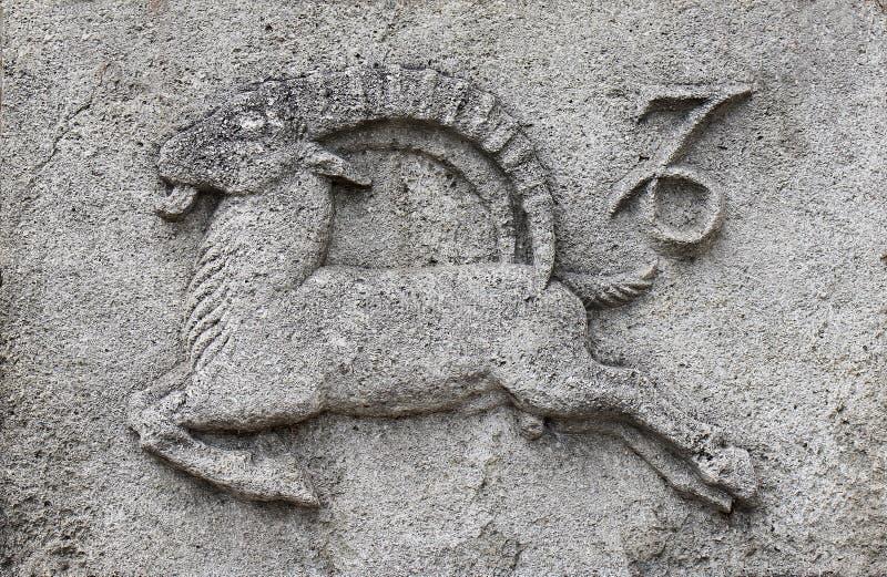 Zodiaque - Capricorne ou Mer-chèvre image libre de droits