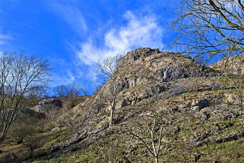 Zoekend naar de lente in Februari, in Dovedale, Derbyshire royalty-vrije stock afbeeldingen