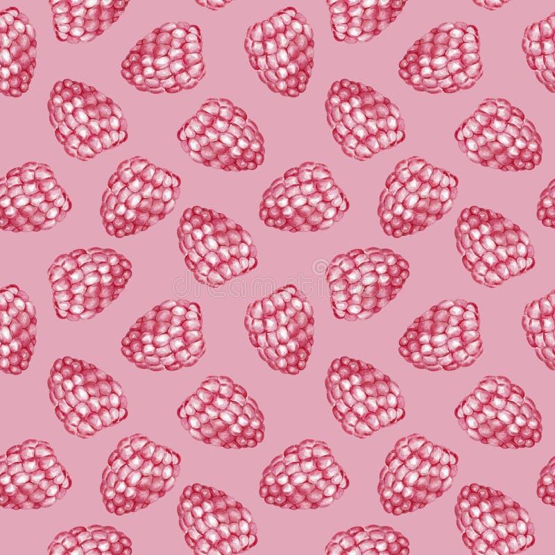 Zoet frambozen naadloos patroon De illustratie van de waterverf stock illustratie
