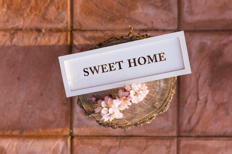 Zoet huisteken op een houten boomstam en amandelboombloemen Decorat stock afbeeldingen