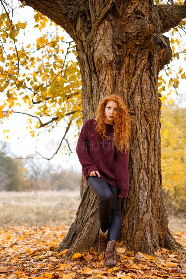 Zoet meisje in het de de de herfstbos, eenzaamheid en melancholie royalty-vrije stock fotografie