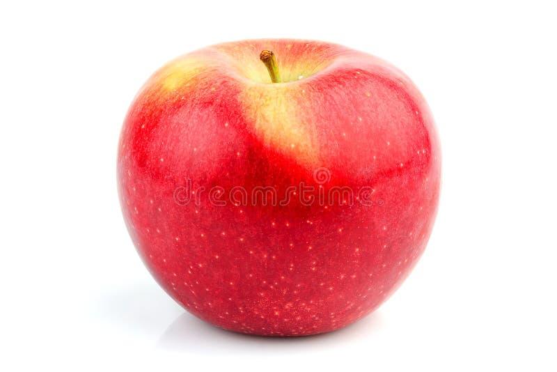 Zoete appel geïsoleerd Florina royalty-vrije stock afbeeldingen