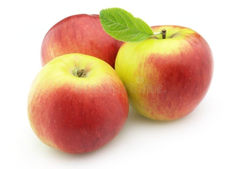 Zoete appelen stock foto's
