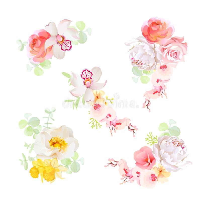 Zoete boeketten van voorwerpen van het bloemen de vectorontwerp De orchidee, nam, pioen, gele narcis, narcissen, wildflowers toe stock illustratie