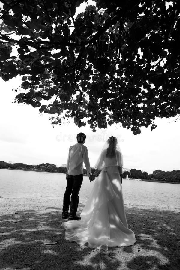 Zoete bruids stock foto's