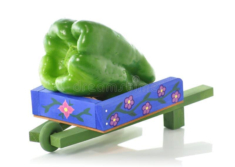 Zoete groene paprika stock afbeeldingen