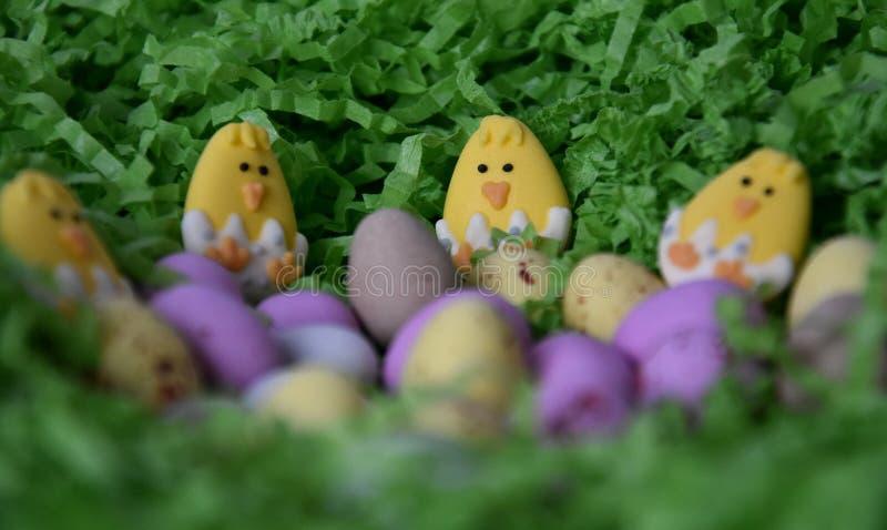 Zoete kleurrijke suikergoedeieren in groen grasnest royalty-vrije stock afbeeldingen