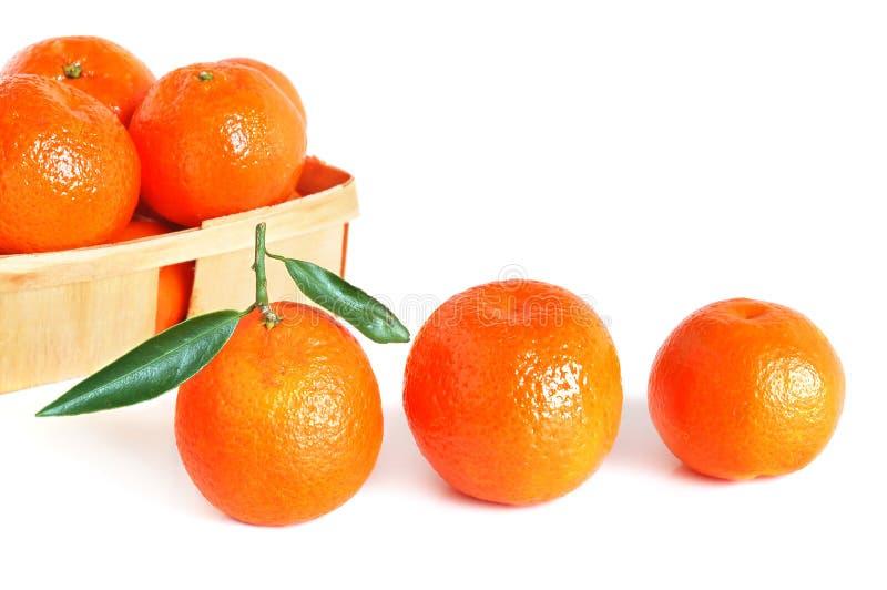 Zoete mandarijnen royalty-vrije stock fotografie