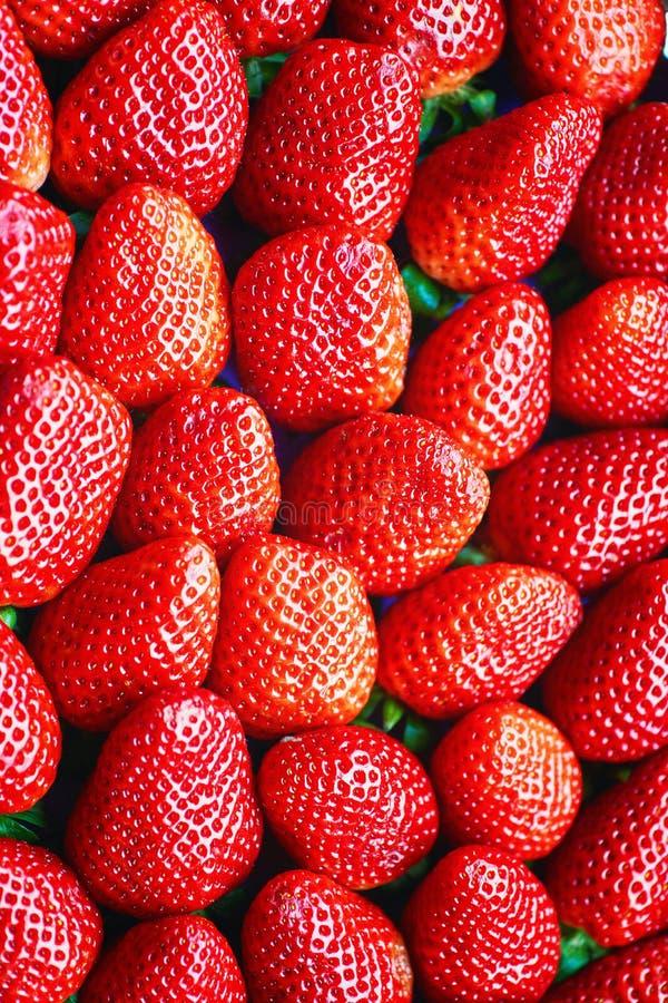 Zoete rode aardbeien, direct boven als achtergrond geoogst royalty-vrije stock foto's