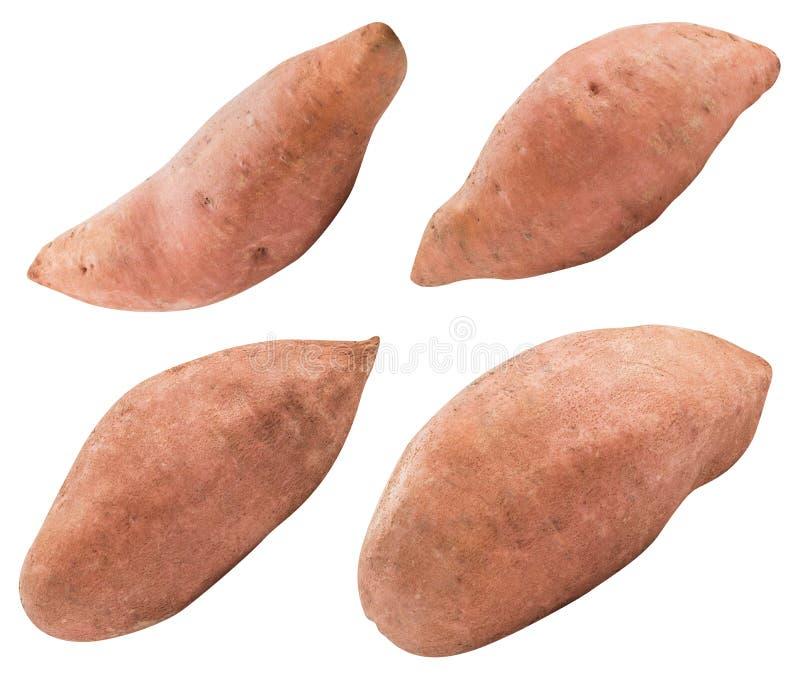 Zoete roze die aardappel op witte achtergrond wordt geïsoleerd royalty-vrije stock afbeelding