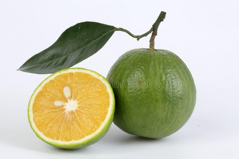 Zoete sinaasappel royalty-vrije stock afbeelding