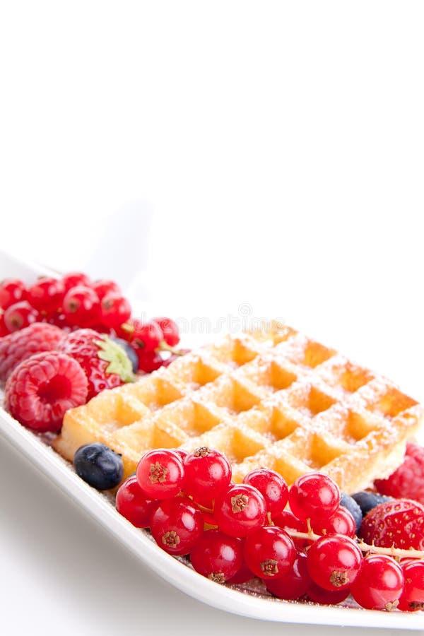 Zoete verse smakelijke wafels met gemengde geïsoleerdew vruchten royalty-vrije stock afbeelding