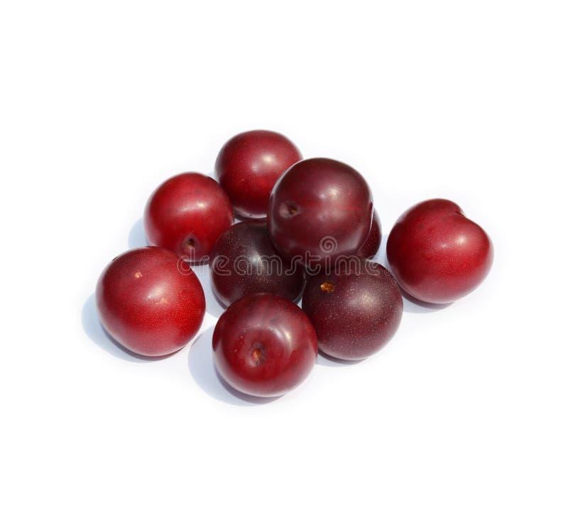 Zoete vruchten - donkerrode pruimen op wit stock foto's