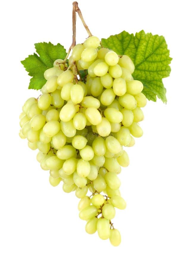 Zoete zaadloze groene druiven op wit stock fotografie