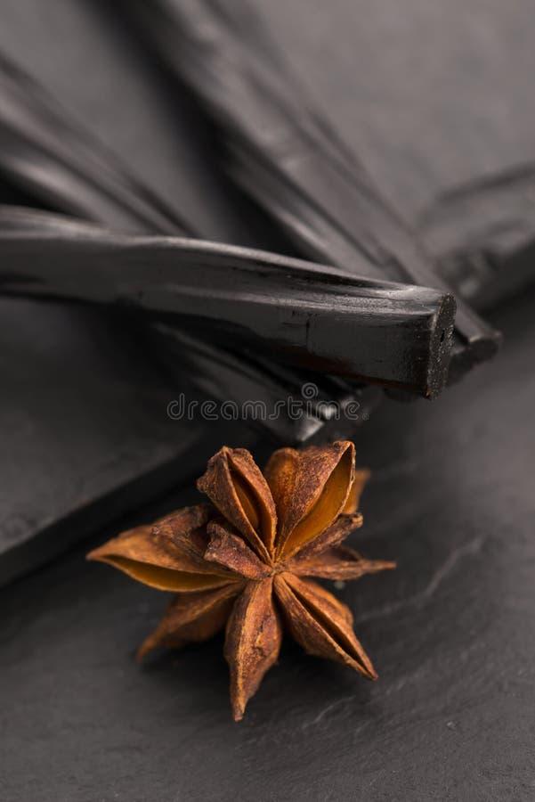 Zoethoutsuikergoed met steranijsplant royalty-vrije stock foto