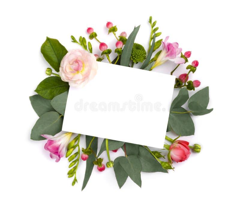 Zombaria acima com as flores isoladas no branco Copie a área de espaço imagens de stock royalty free