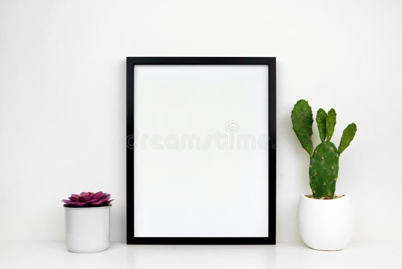 Zombaria acima do wiMock preto do quadro acima do quadro preto com as plantas da planta carnuda e do cacto em uma prateleira bran foto de stock