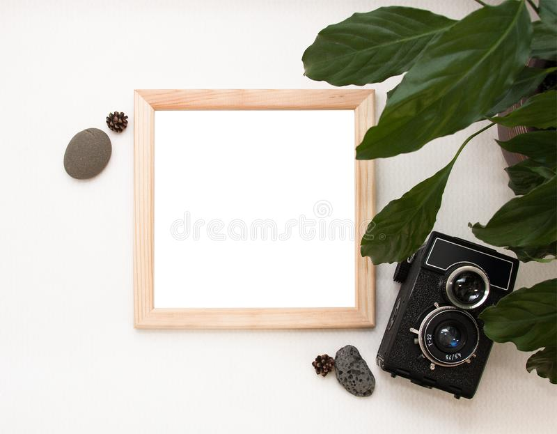 Zombaria colocada lisa acima, vista superior, quadro de madeira, câmera velha, planta e pedras Disposição interior, modelo qua fotos de stock