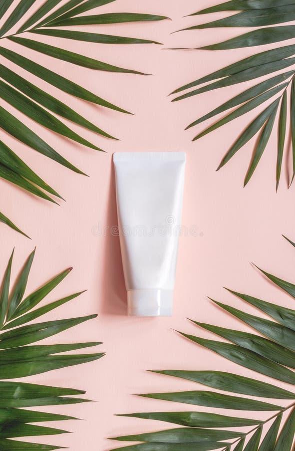 Zombaria plástica de empacotamento cosmética minimalistic criativa acima com folhas de palmeira Modelo para a marcagem com ferro  imagens de stock royalty free