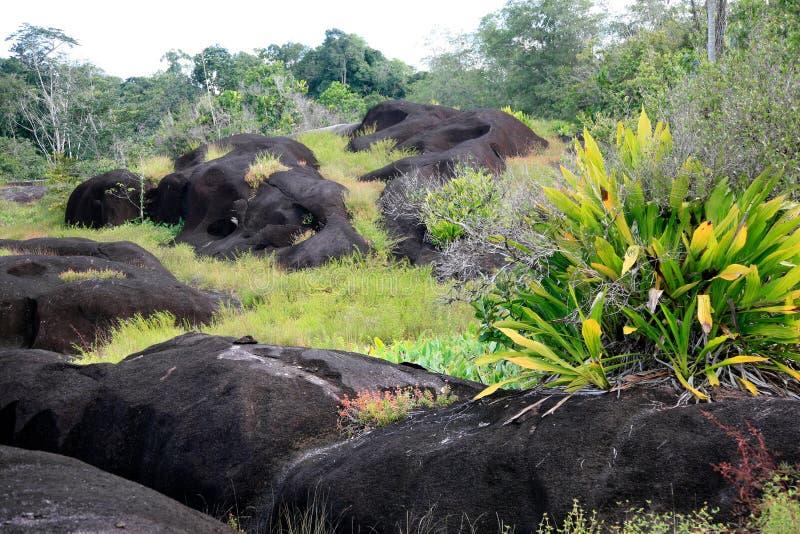 Zombi Inselbergs, Saint-Georges próximo de l'Oyapock, Guiana Francesa fotos de stock