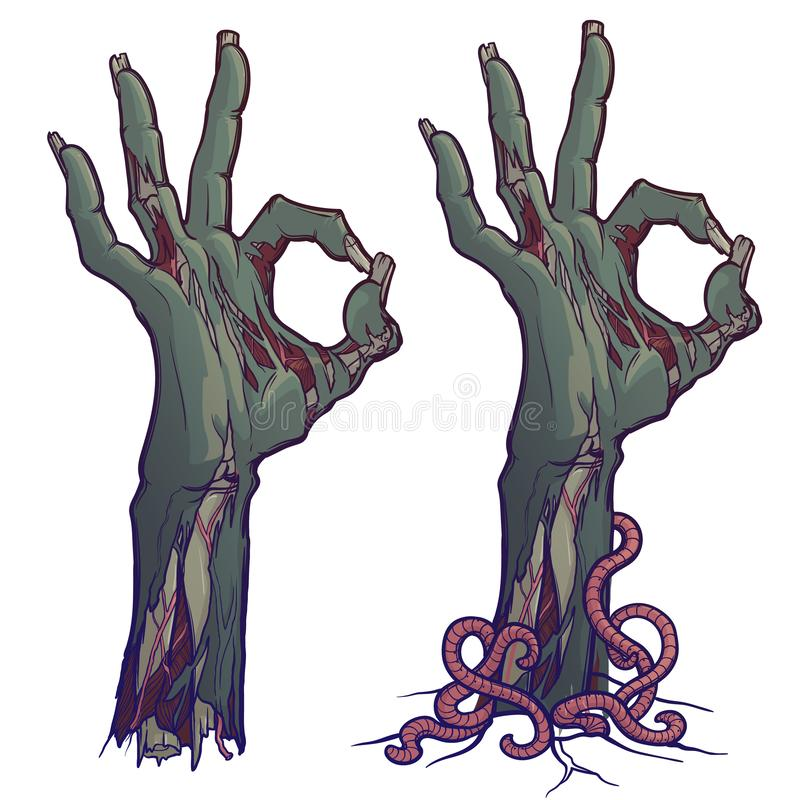 Zombie body language. OK Sign. lifelike depiction of the rotting flash with ragged skin, protruding bones and cracked. Nails. linear drawing colored Isolated on vector illustration