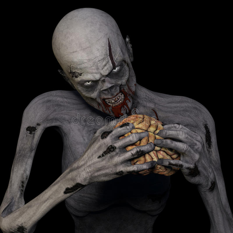 Zombie Eating Brain. An undead Zombie glaring at you while munching on a brain. Isolated on a black background stock illustration