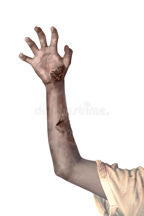 Zombie hand isolated over white background royalty free stock photos