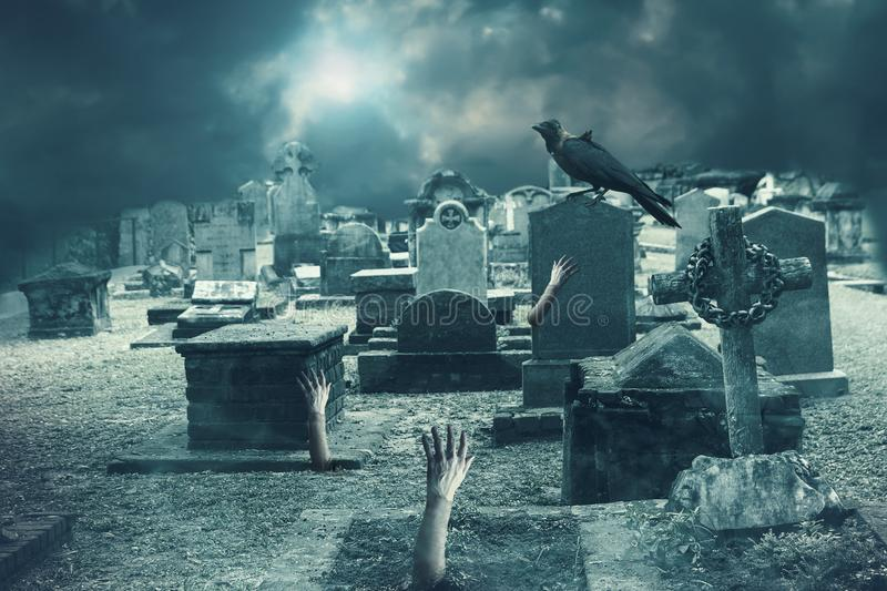 Zombie hand rising out of grave stock images