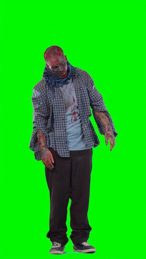 Zombie spaventoso orribile di tema di Halloween fotografia stock libera da diritti