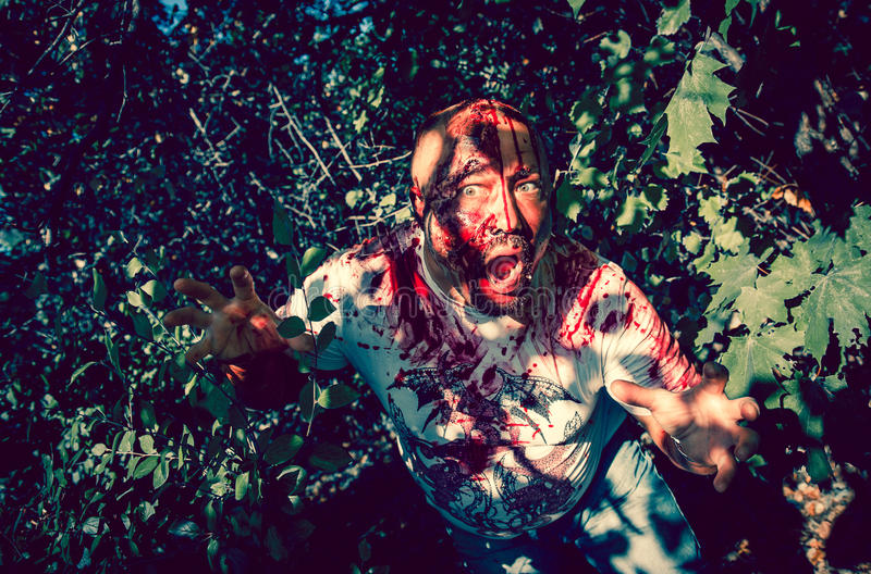 Download Zombie walking stock image. Image of scary, halloween - 43077653