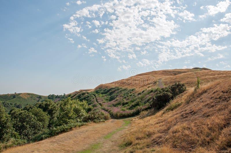 Zomer in de Malvern-heuvels royalty-vrije stock afbeelding