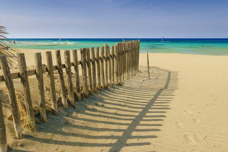 zomer Het Regionale Natuurreservaatduin Costiere Torre Canne: omheining tussen overzeese duinen Apulia-Italië royalty-vrije stock fotografie