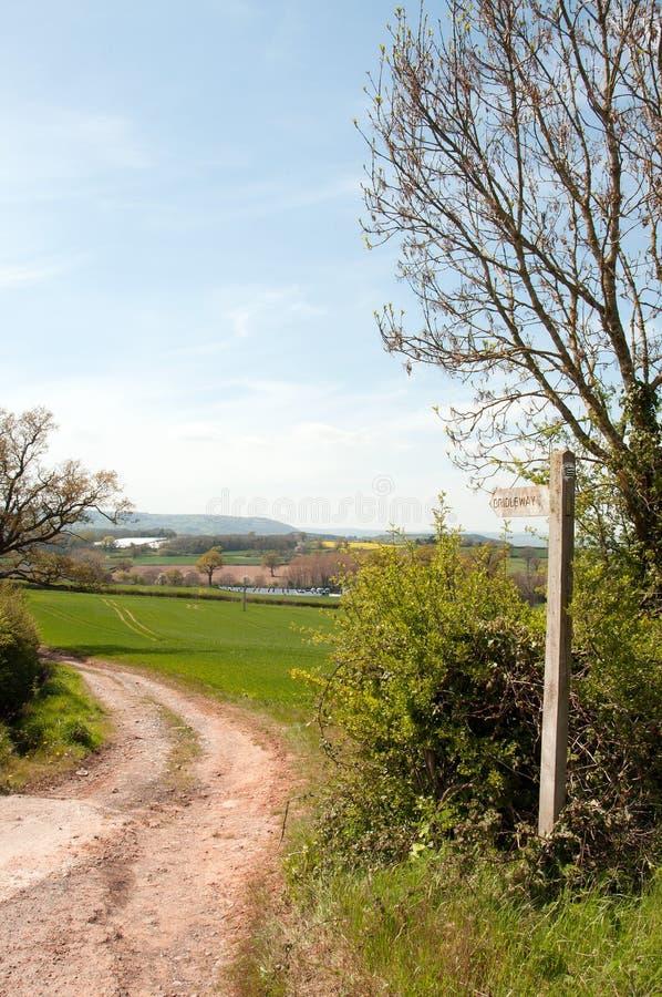 Zomer landbouwlandschap in het Britse platteland royalty-vrije stock fotografie