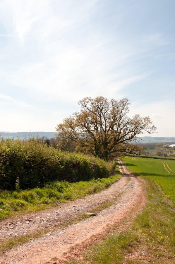 Zomer landbouwlandschap in het Britse platteland royalty-vrije stock foto's