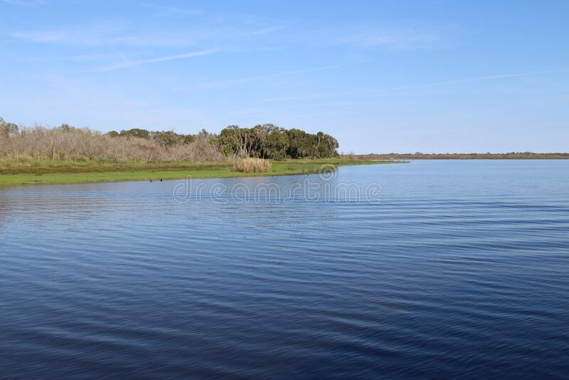 Zomer landschap met kalm meer en blauwe lucht royalty-vrije stock fotografie