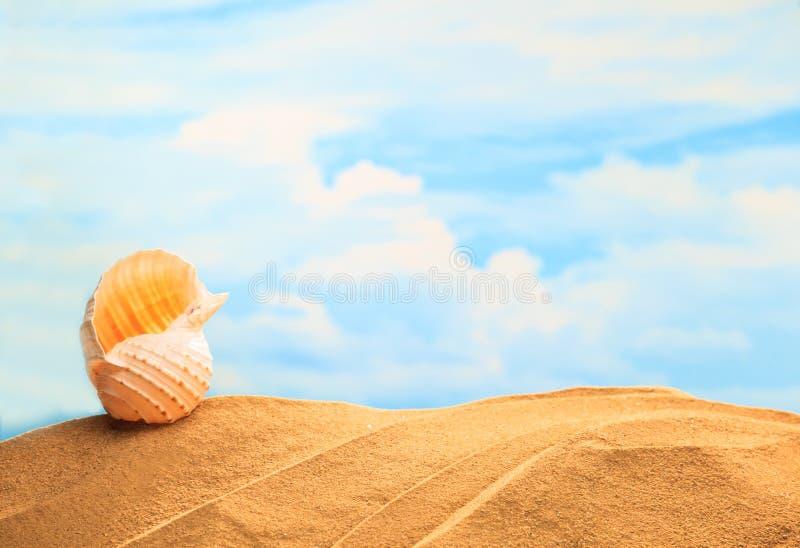 Zomer Seizoengebonden, witte gele zeeschelp op het zandige strand met zonnige kleurrijke blauwe hemelachtergrond en exemplaarruim stock afbeeldingen