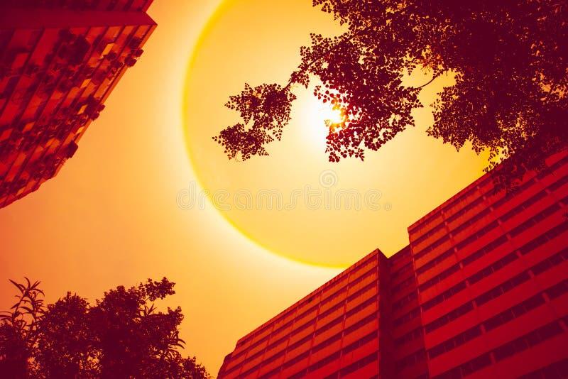 Zomer zonnige hete dag stock afbeelding