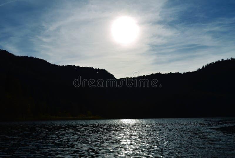 Zon die het Beierse bos overschaduwen stock foto's