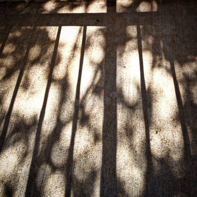 Zon en Lange Schaduwen van Traliewerk en Boomlidmaten stock foto