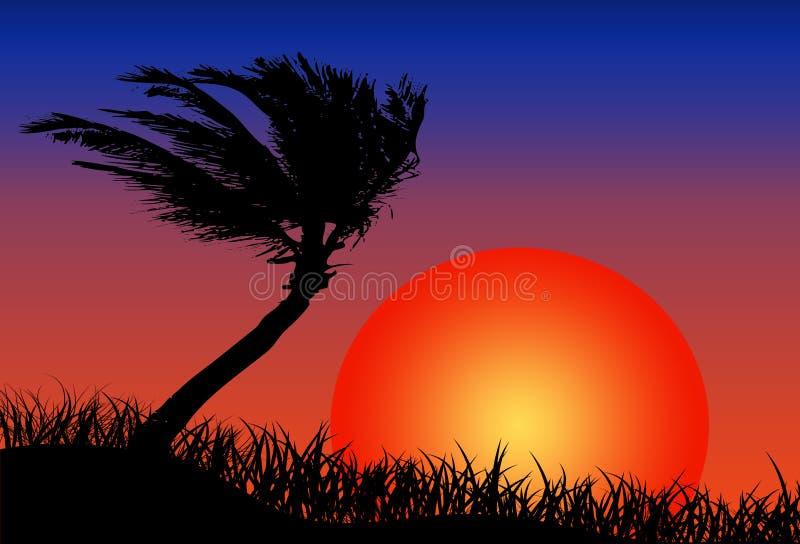 Zon en strand stock illustratie