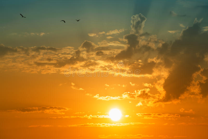 Zon en wolken met vogels stock foto's