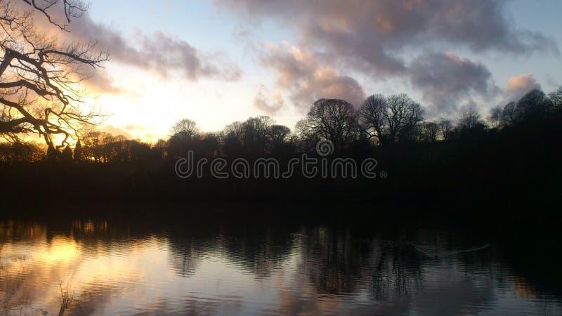 Zon neer in Roundhay-Park stock afbeelding